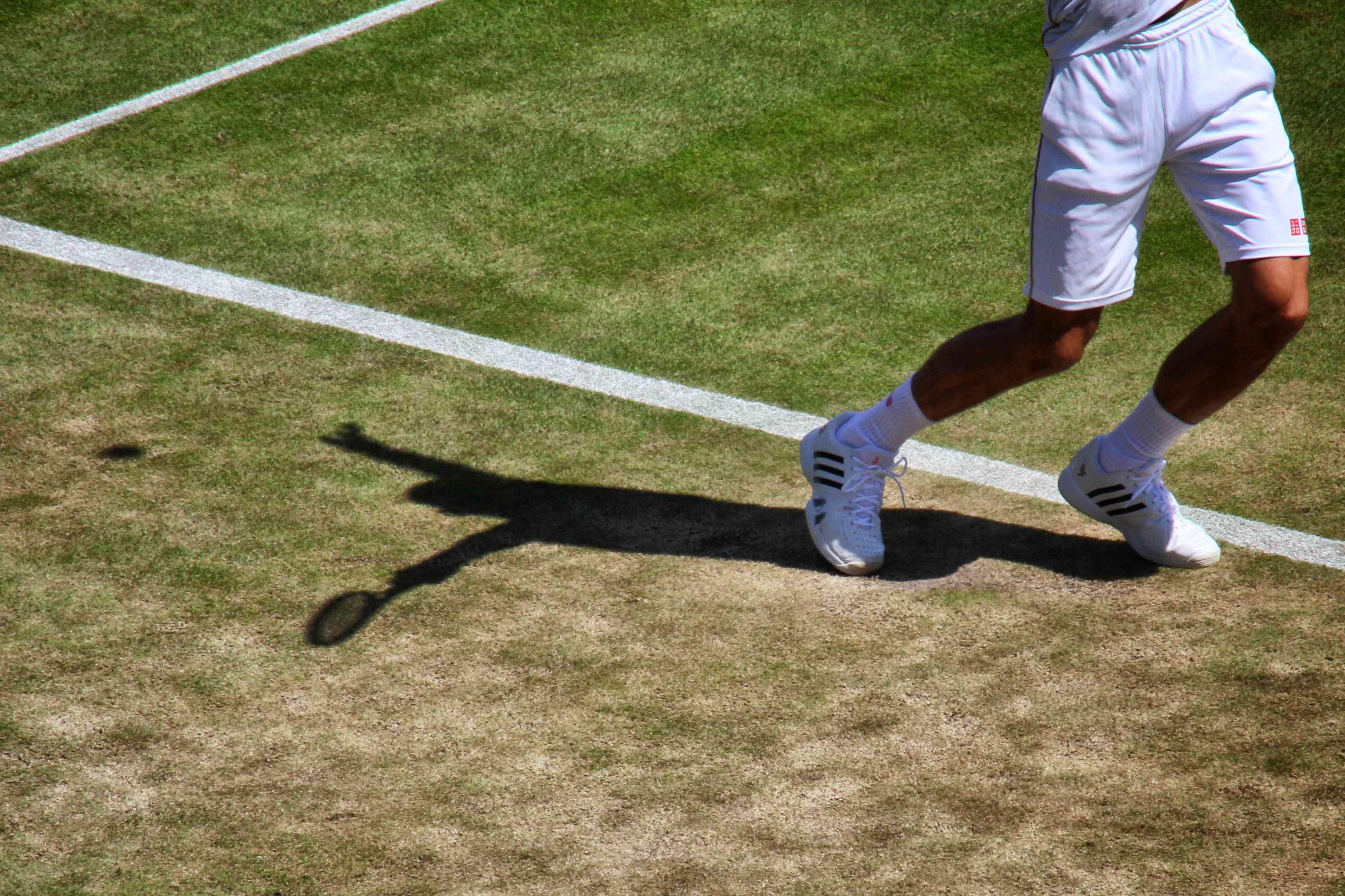 Wimbledon Jocko shadow_Snapseed