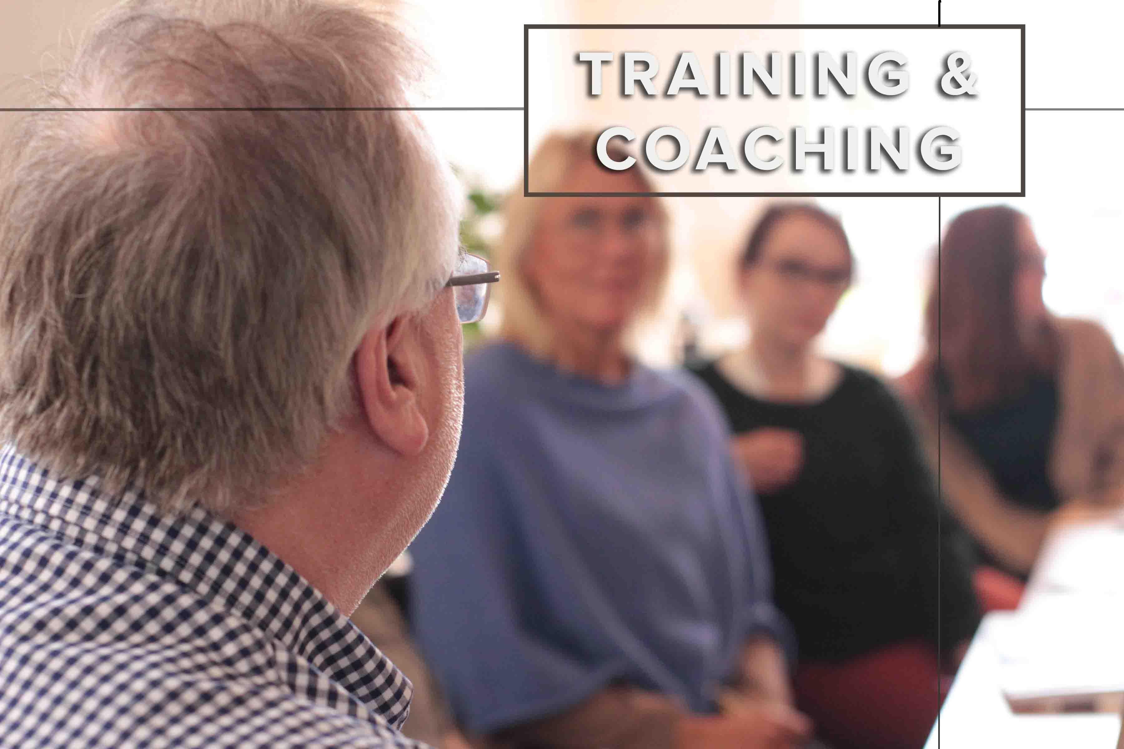 Web home page menu - Training V2