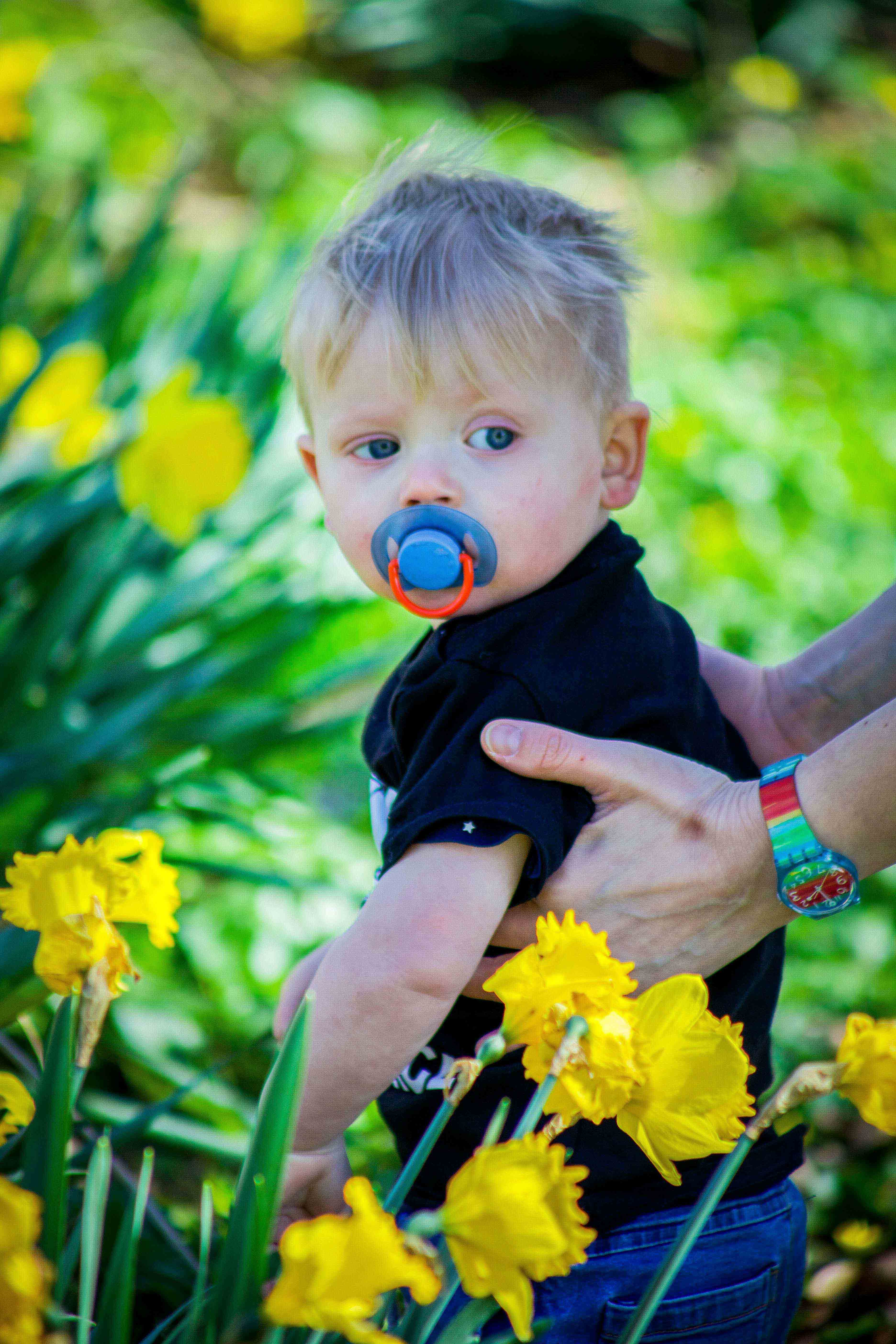 Sean Macreavy Media - Family & pets 5-5424