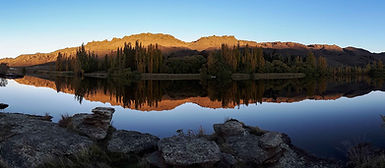 NZ reflective wide.jpg