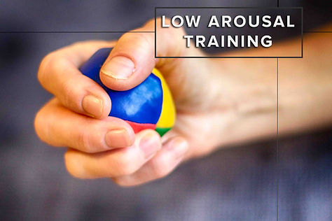Stress ball being squeezed - Low arousal training