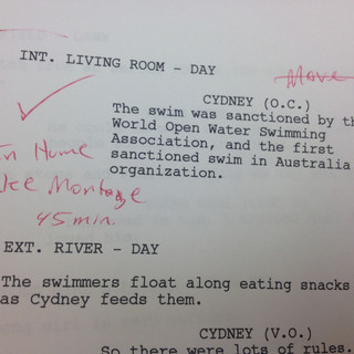Script Notes Take Your Dream
