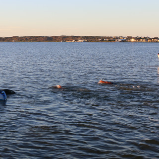Swimmers head out on their last 11 km from the Goolwa pier in South Australia with a Coast Guard escort.