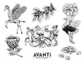 AVANTI Coffee Company (2019)
