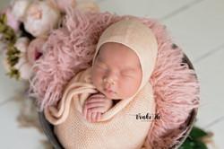 Baby Jade | 13days old