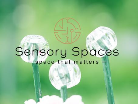 Biophilic sensory design intro