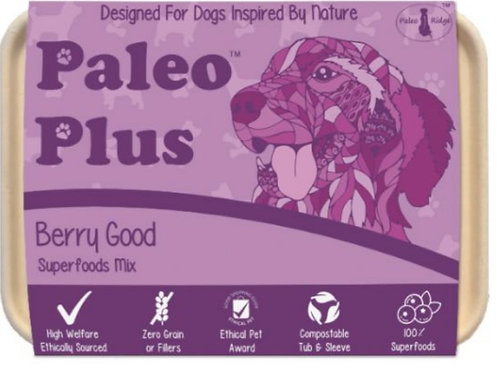 Paleo Plus Berry Good 500g