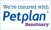 We're insured with Petplan Sanctuary