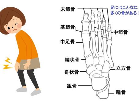 ~コラム~ 足と靴と健康 その①