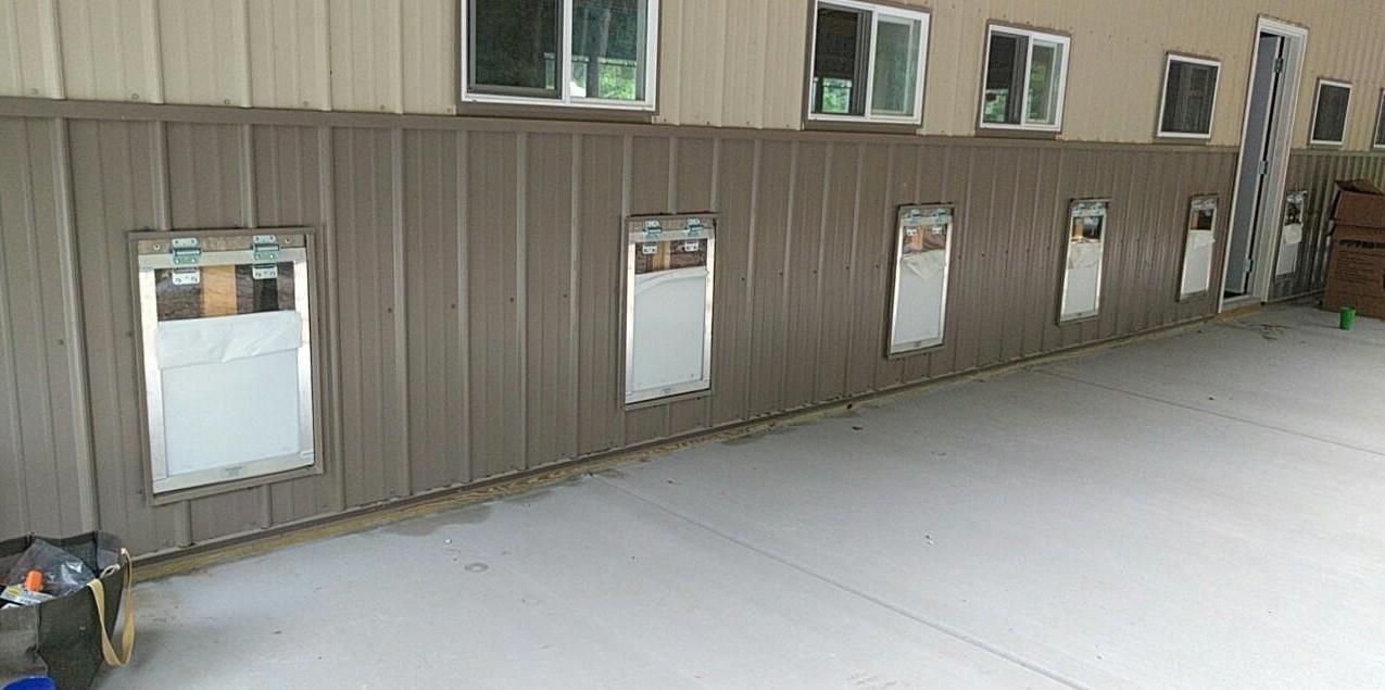 Dog doors & windows are looking good