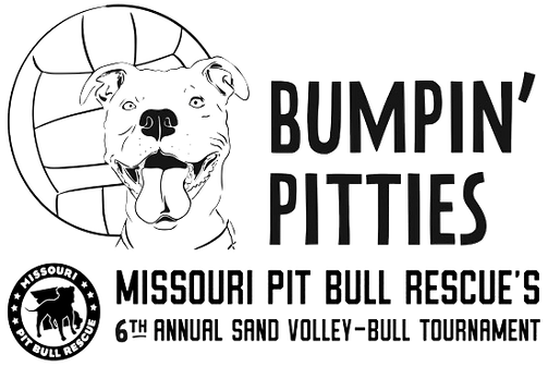 Bumpin Pitties 6th FOR WEBPAGE.png