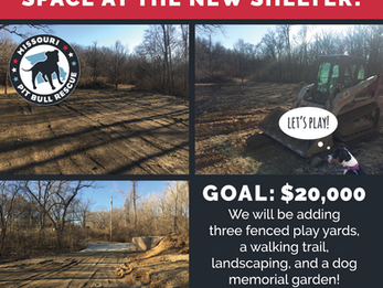 Help us finish the outdoor space at the new shelter!