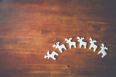White Reindeer on Wooden Surface