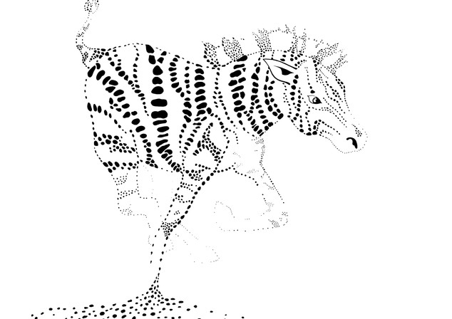 zebra1_edited.jpg