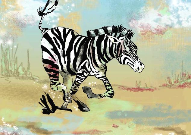 zebra2_edited.jpg