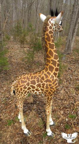 Amahle Sanaa the Masai Giraffe