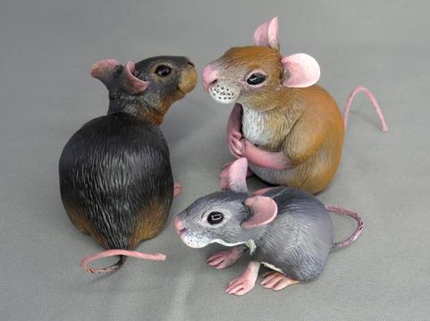 Miniature Mice