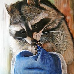 Raccoon-cap.jpg