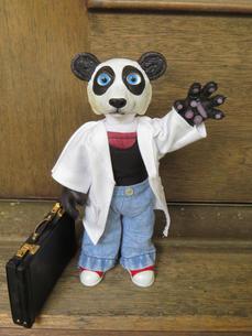 BioBear Panda Doll