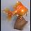 Thumbnail: Giant Goldfish