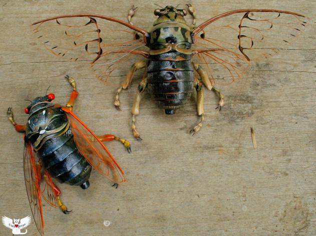 Green and 17yr Cicada