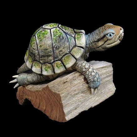 Miniature Turtle #18