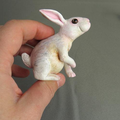 Mini Gourd Bunny #20 - white pet rabbit
