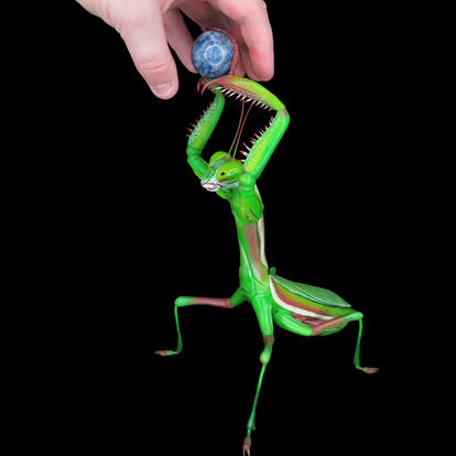Praying Mantis Offering