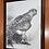 "Thumbnail: ""Goshawk Gaze"" framed ink drawing"