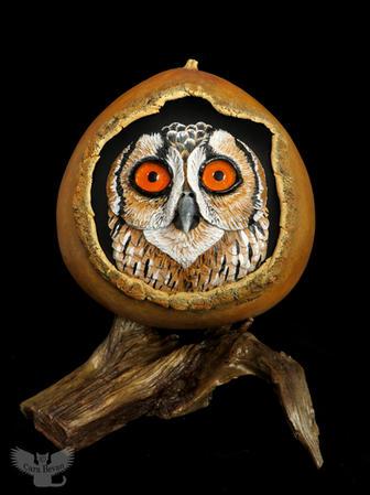 Peeking Owl #1