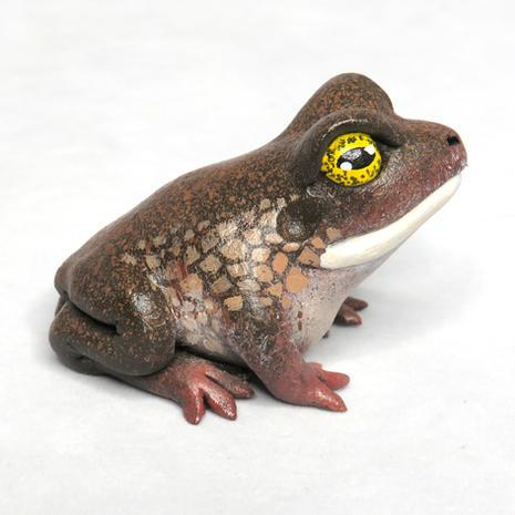 Miniature Frog #180