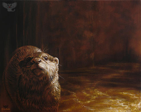 Otter Curiosity