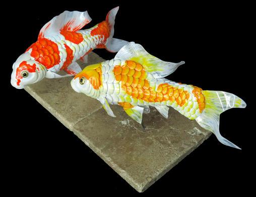 Koi fish collection