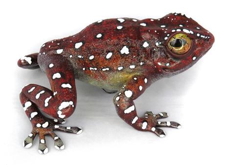 Frog #161 - Cinnamon Frog
