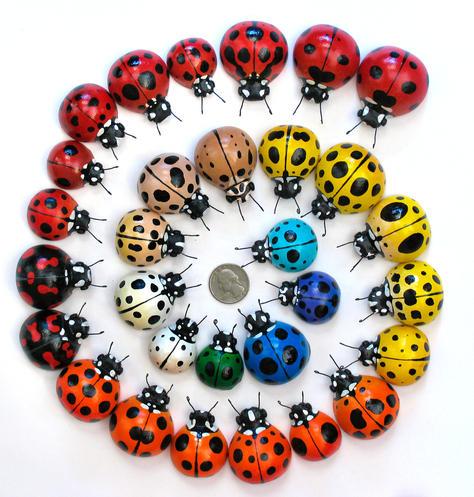 Miniature Ladybugs
