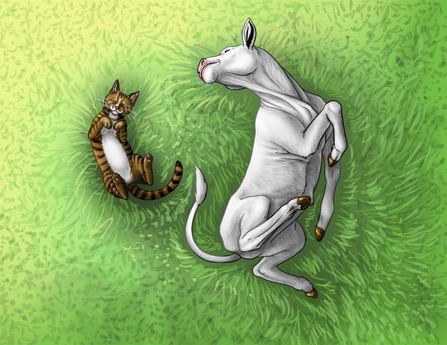 Illustration #10