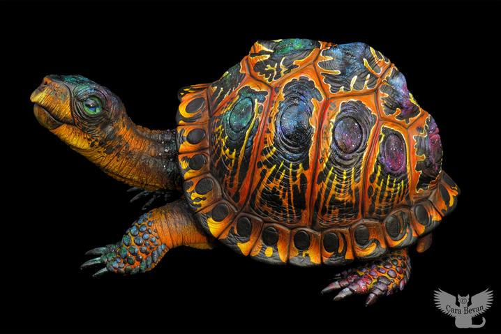 """""""Celeste"""" the Cosmic Turtle, #HR21"""