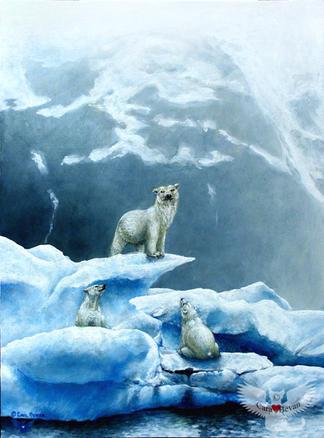 Polar Knowledge