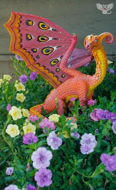 Francis the Tropical Dragon