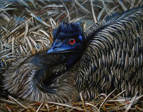 """Emu Elegance"" acrylic on canvas"