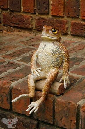 """Frog #100 - """"Mr. Dancer"""""""