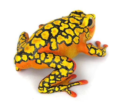 """Frog #163 - """"Popcorn"""" Harlequin Dart Frog"""
