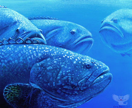 Group of Groupers