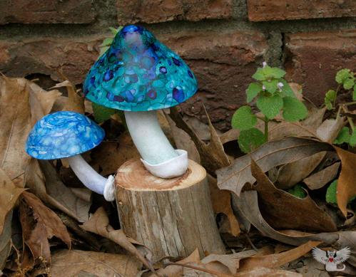 Mushroom #7