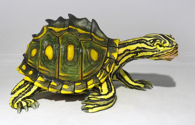 Sawback Turtle, #HR10