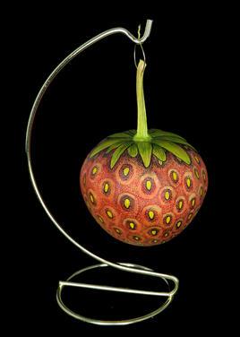Gourd Strawberry