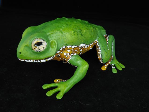 Frog #153 - Giant Monkey Frog