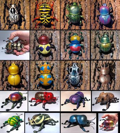 Miniature Gourd Beetles