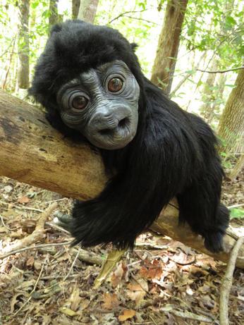 Baby Gorilla Doll
