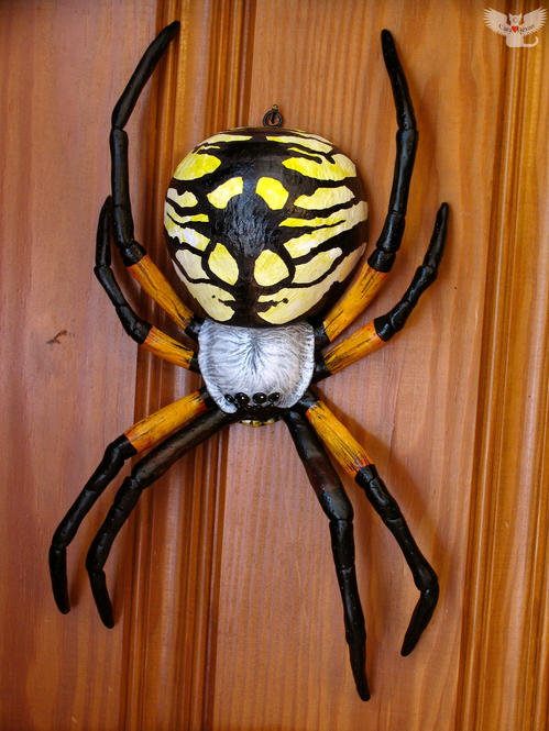 Wall-hanging Writing Spider